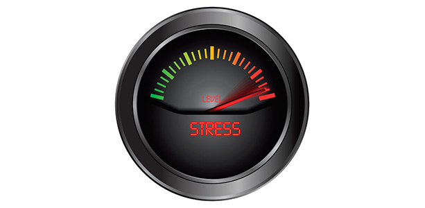 Does Excess Stress Go to Your Waistline Brad King