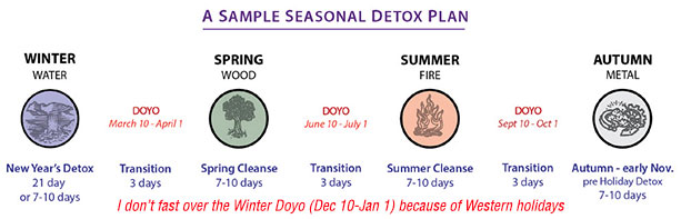 Seasonal Detox Elson Haas MD