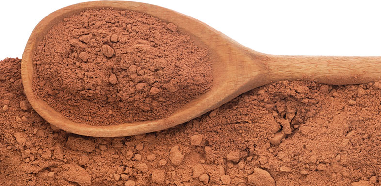 Indulge in Cocoa to Promote Good Health Gene Bruno