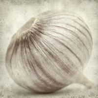 Garlic Protects against Cardiovascular Disease, Dementia and Metabolic Syndrome
